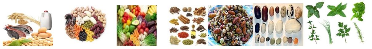 foods-and-spices-image